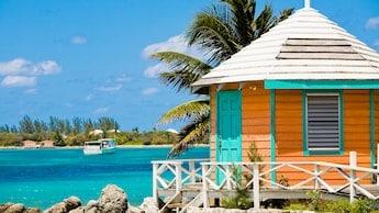 Disney Bahamas Cruise