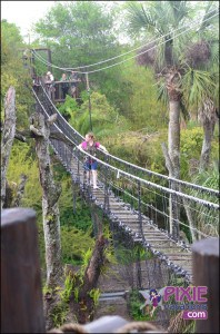 Crossing the Rope Bridge during the Disney Wild Africe Trek